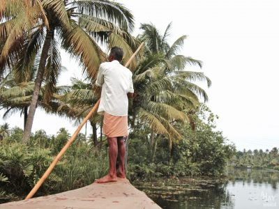 Kochi, au coeur de la nature dans le Kerala