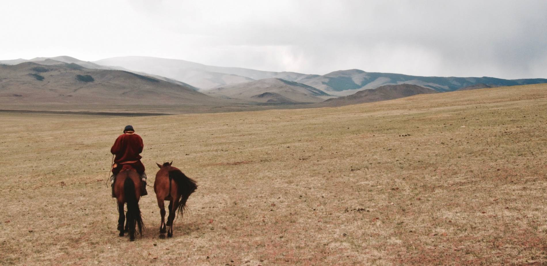 cheval mongolie