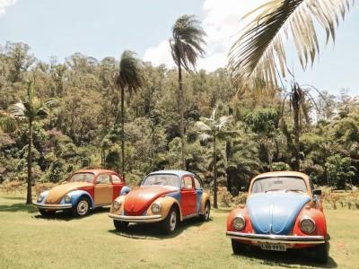 Art contemporain à Inhotim – Brésil