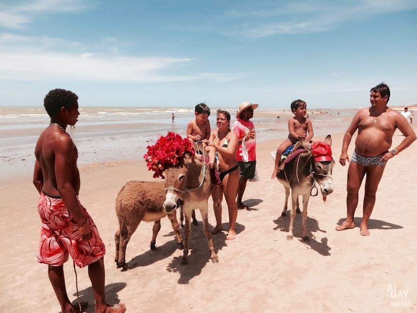 Canoa Quebrada Brésil Blog Voyage