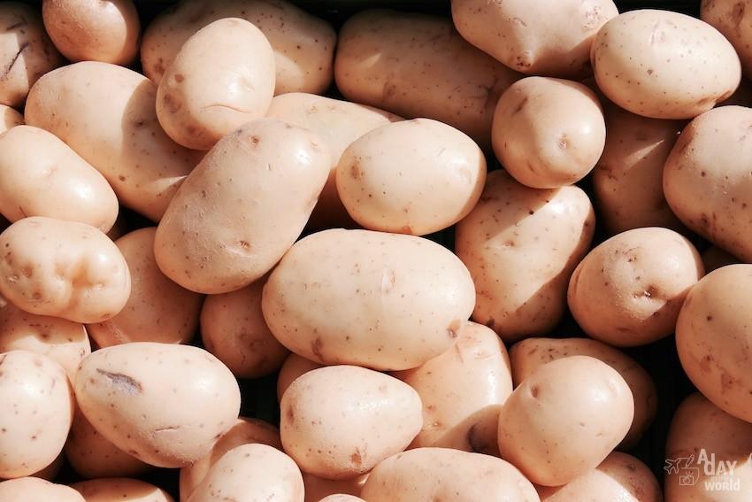 patate marché de carcassonne