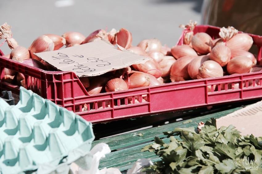 oignon marché de carcassonne