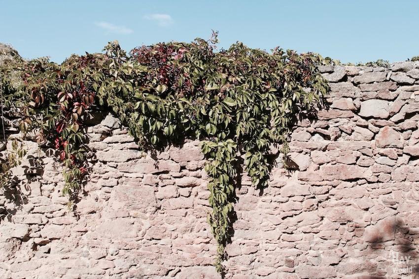 chemin cité de carcassonne