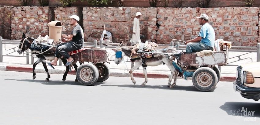charette-dans-les-rues-de-marrakech