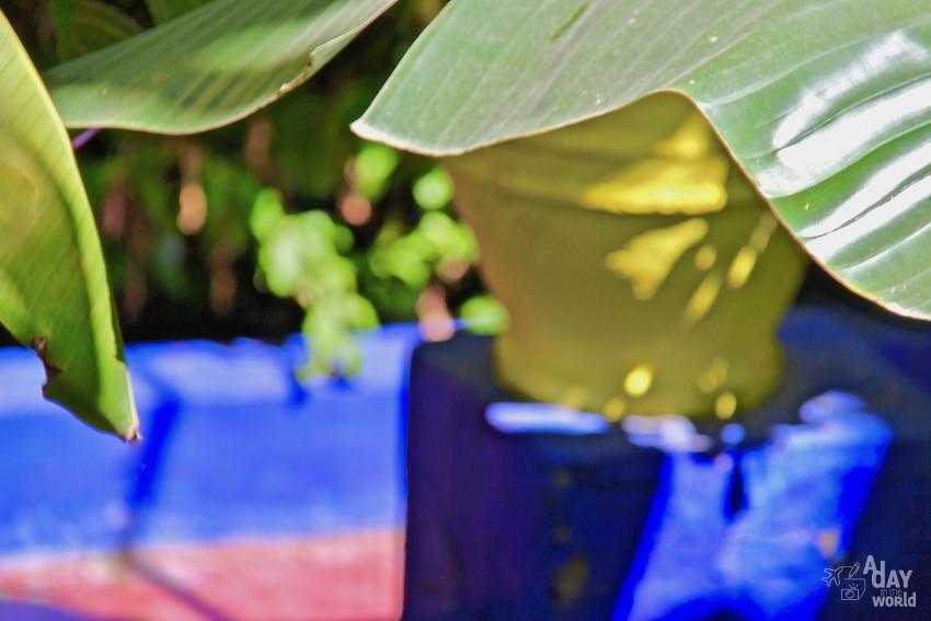 couleur-jardin-majorelle