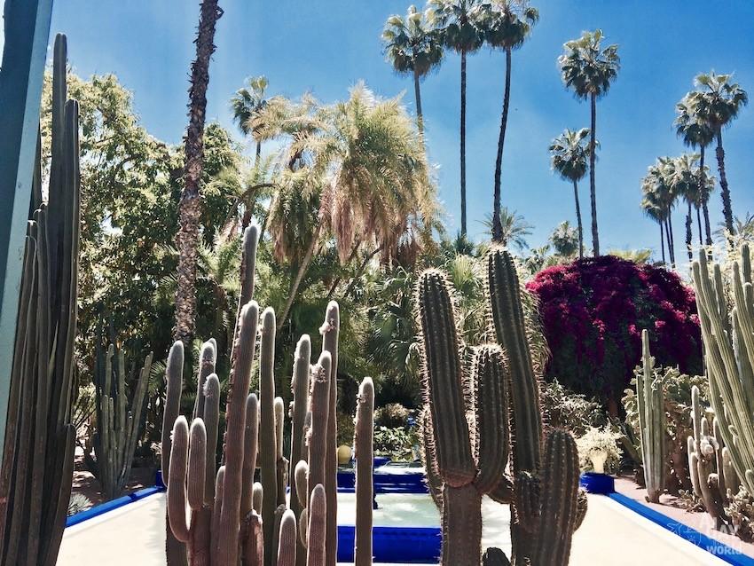 vue-jardin-majorelle-marrakech