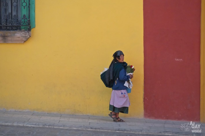 oaxaca mur de couleurs