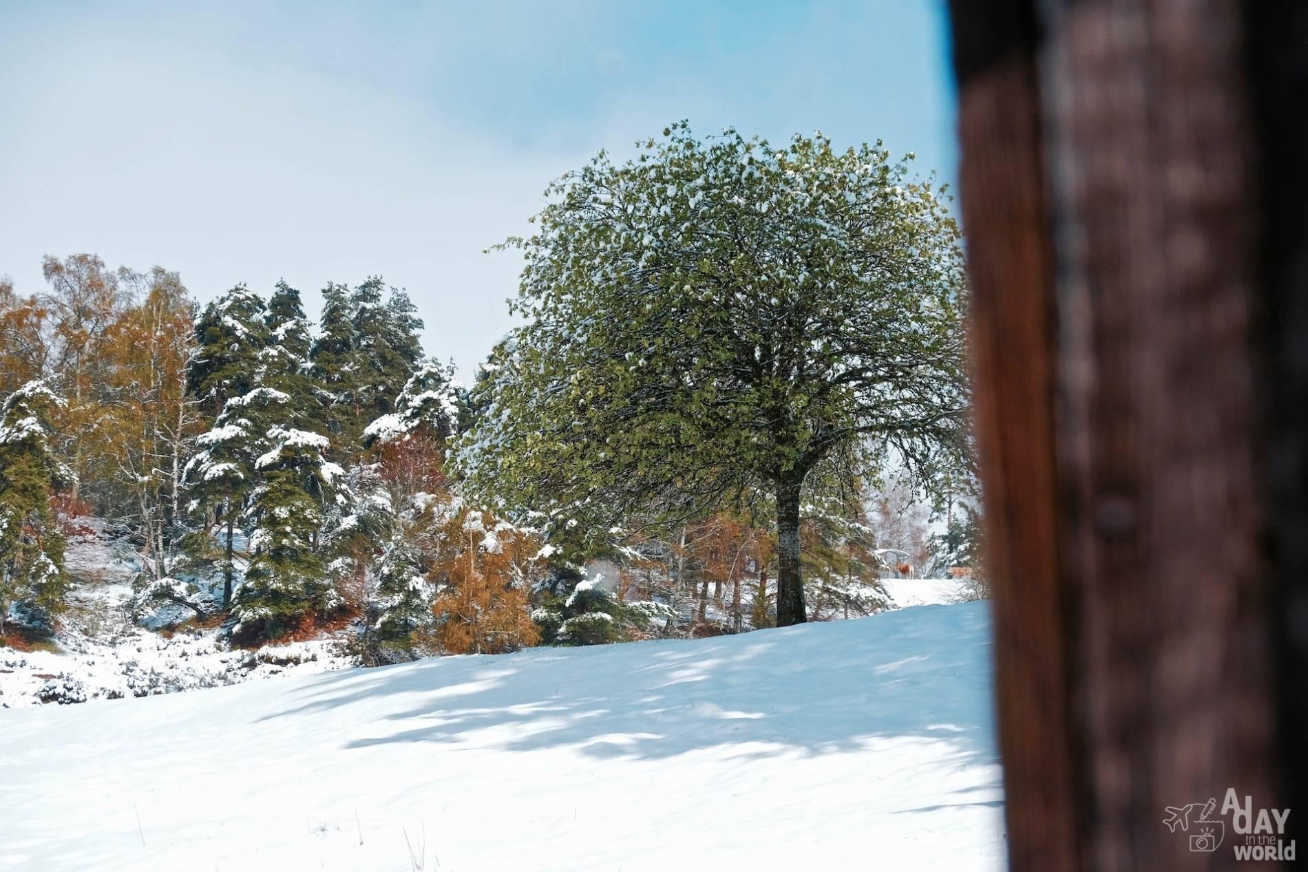 neige lozere 3