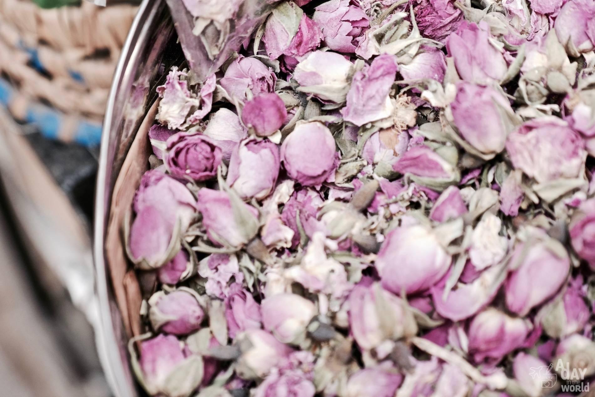 rose maroc