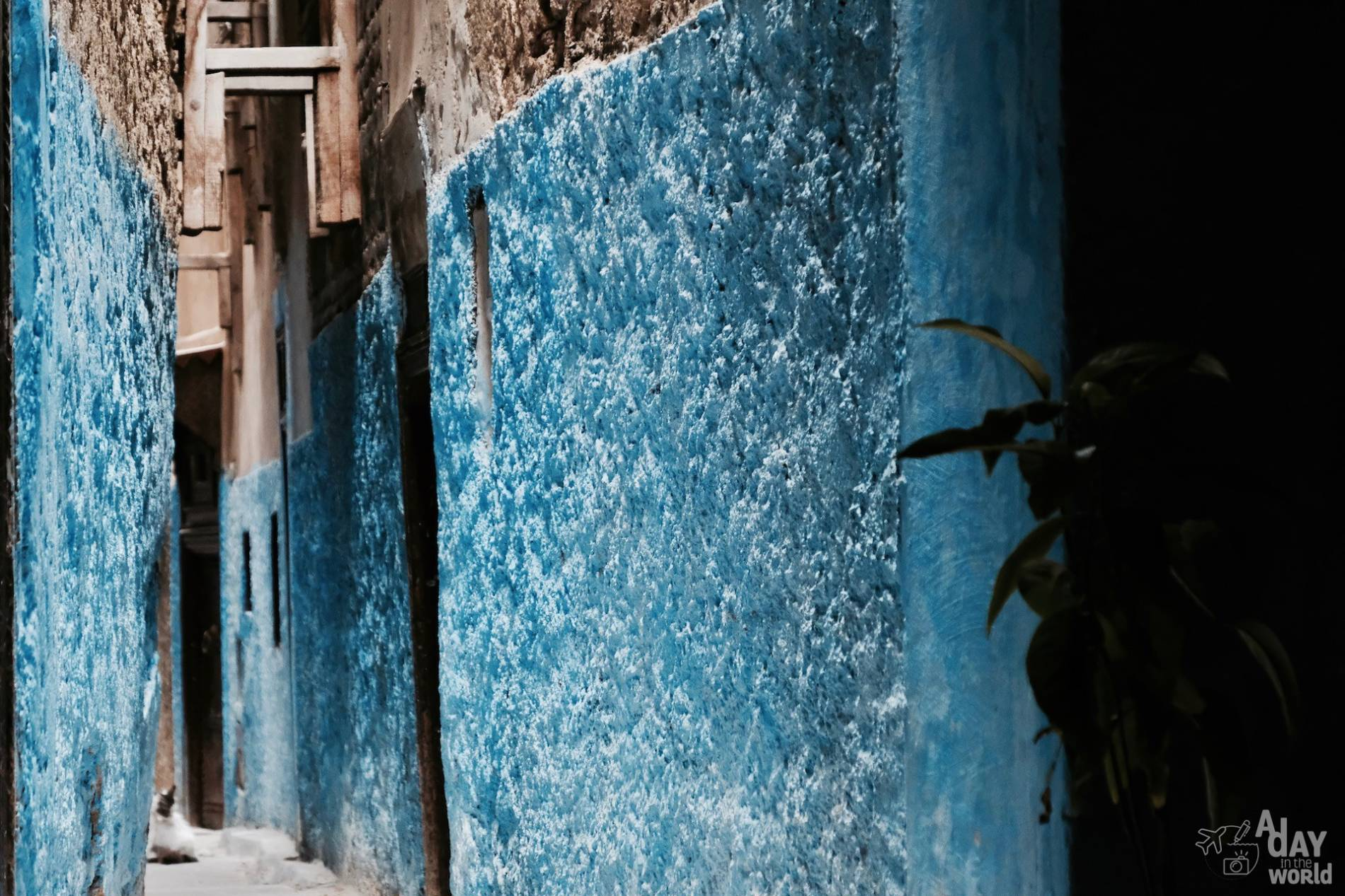 rue medina fes