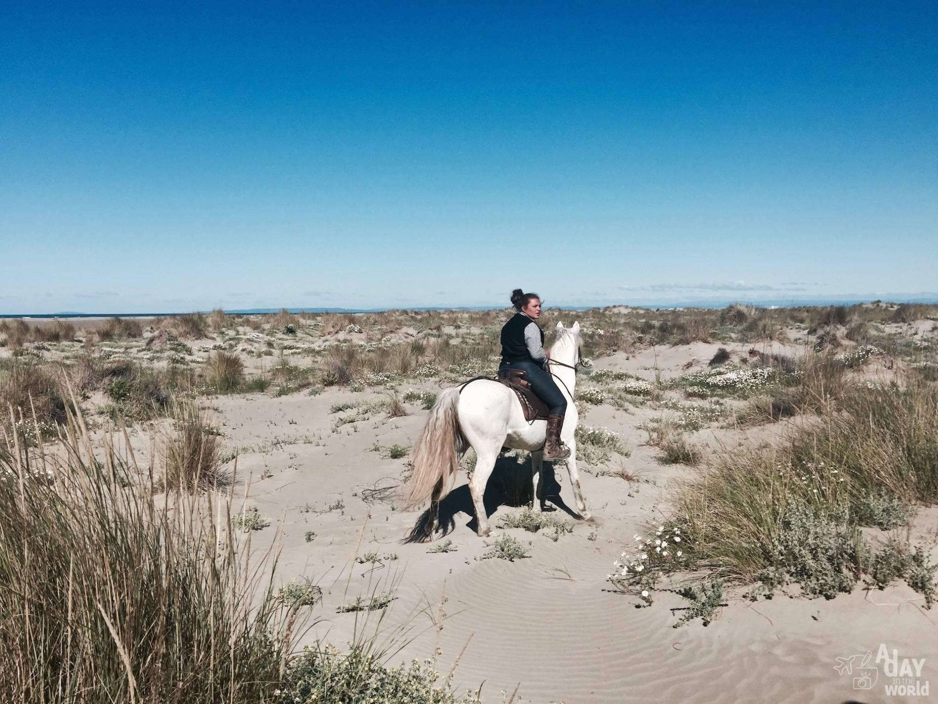 balade cheval camargue 3