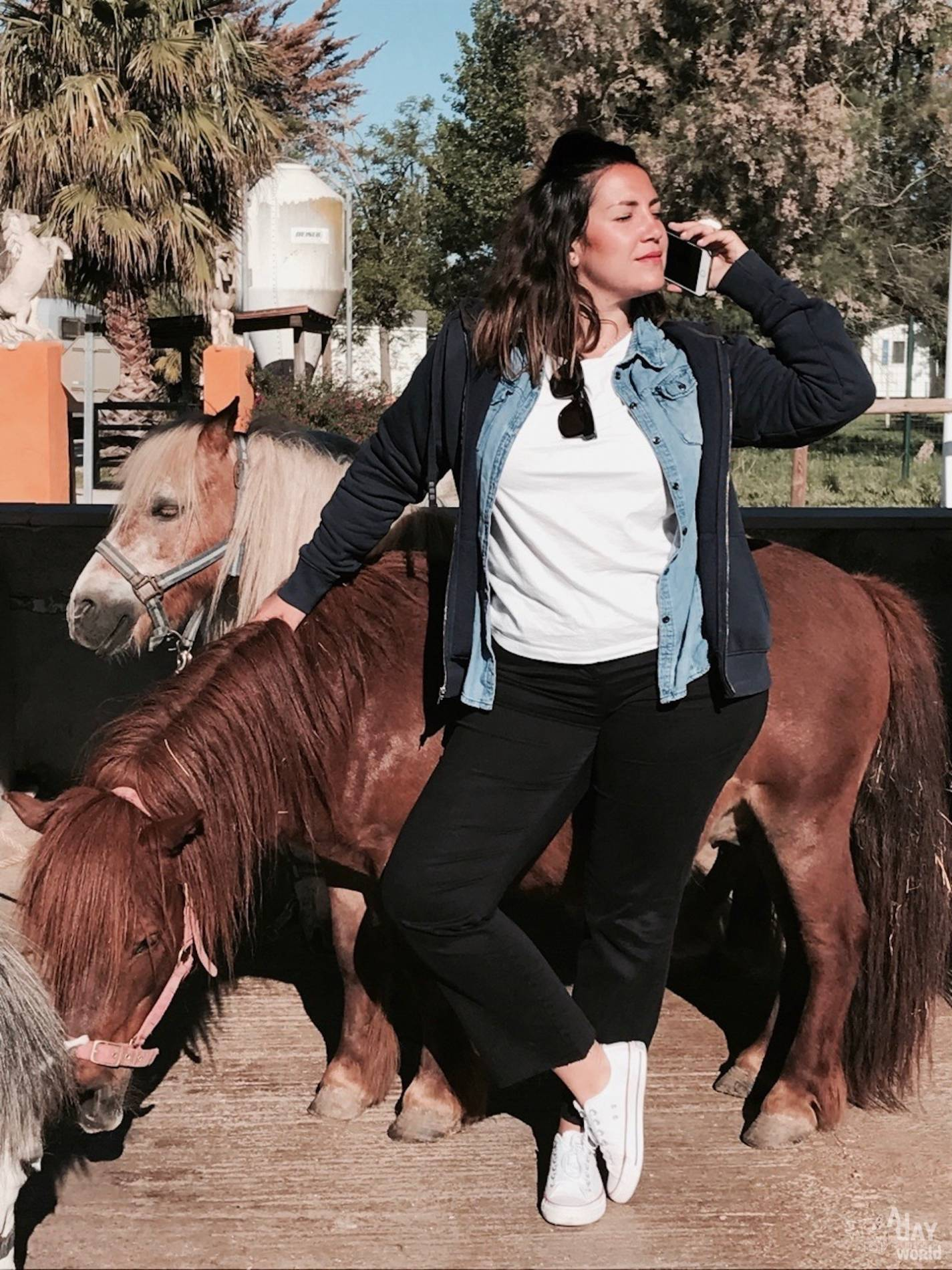 marie frayssinet cheval