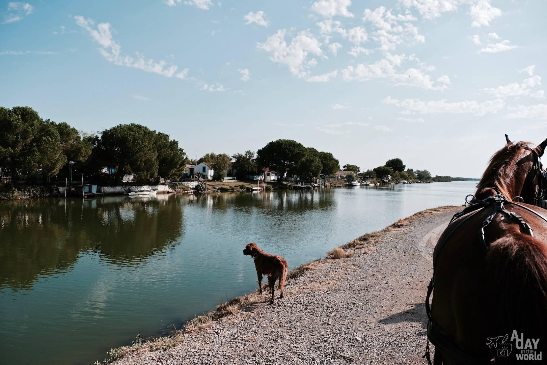 nature occitanie