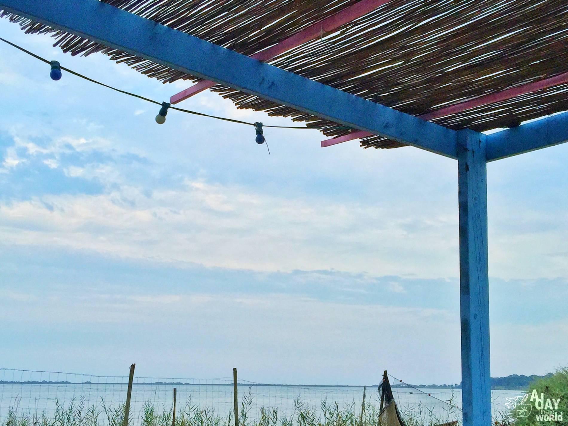 bassin de thau la ferme marine des aresquiers