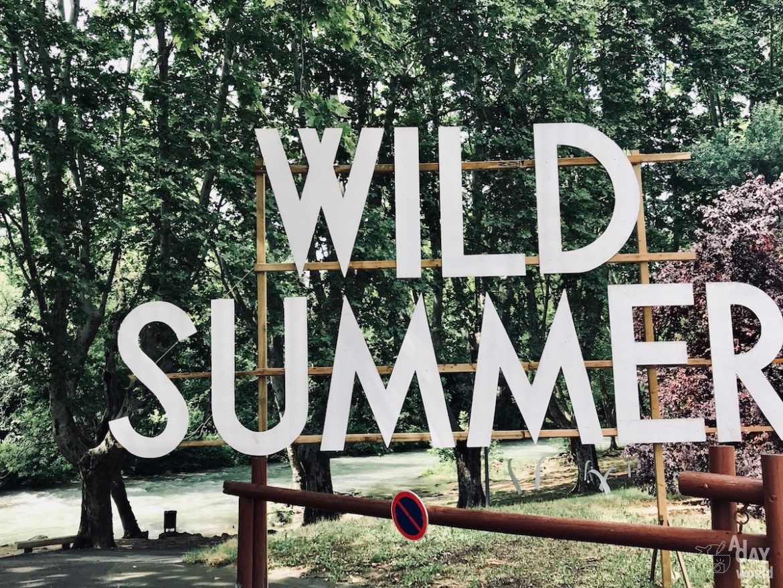 wild-summer-festival1