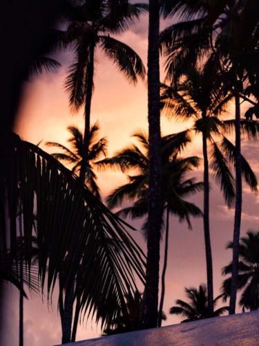 lever-soleil-las-terrenas