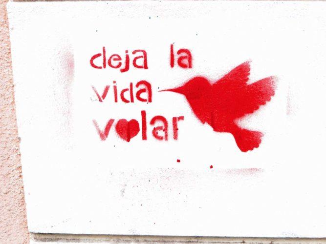 streetart-valparaiso-chili-10
