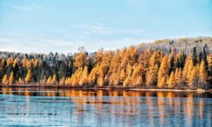 Itinéraire : 10 jours de road trip au Québec en automne