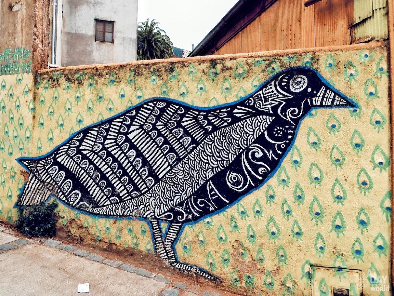 top-10-oiseaux-street-art-1
